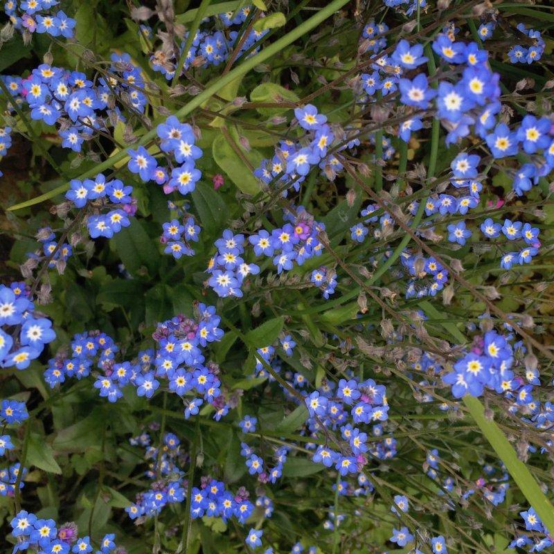 🌈📷 #5 Blue Bleu Blau Azul