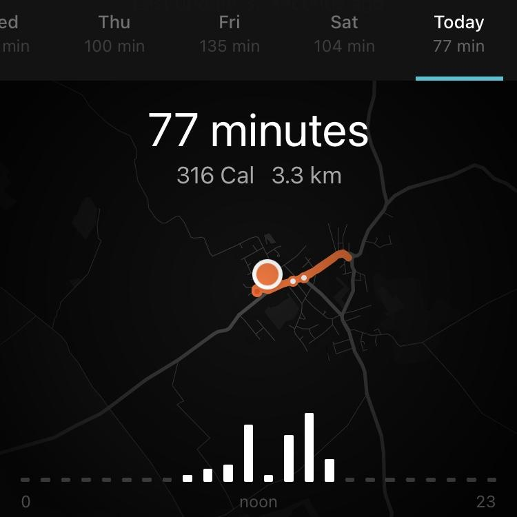 I didn't walk quite as far this Sunday as I might otherwise…