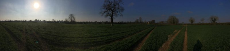 Societal distancing – Panorama of fields
