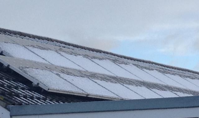Frosty (snow) #mbaug 📷 ♻️ 20150129 (unlike today)