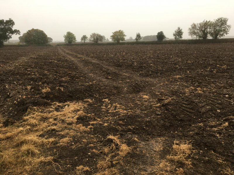 Ploughed field and/or public footpath